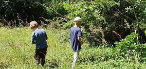 Kinder entdecken den Wald