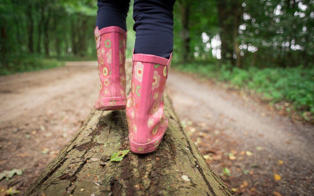 Ab in den Wald: spielen, entdecken, spüren! – Familienwochenende