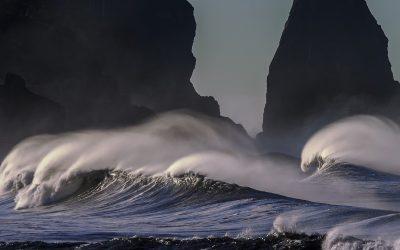 Endlich wieder Erzählsalon! Meeresrauschen – Geschichten vom Wasser und seinen Bewohnern