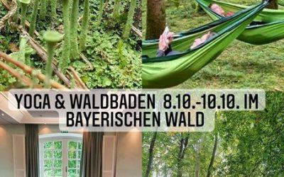 """""""EINFACH SEIN"""" – Yoga & Waldbaden im Bayerischen Wald"""